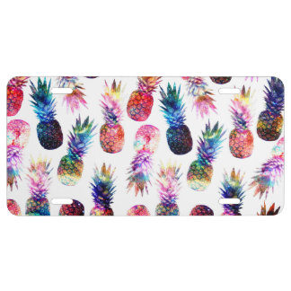 watercolor and nebula pineapples illustration license plate