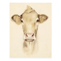 Watercolor Barn Animals | Cow Postcard