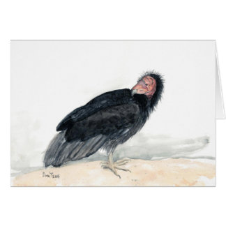 Watercolor bird greeting card: CA Condor Card