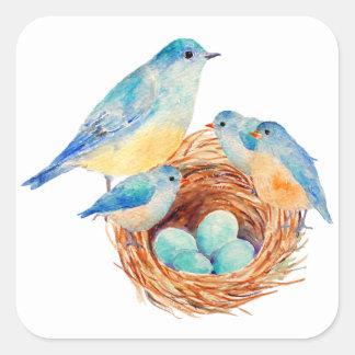 Watercolor Blue Bird Family Bird Nest Chicks Square Sticker