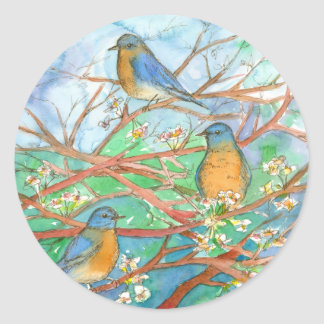 Watercolor Bluebirds Cherry Fruit Blossom Tree Classic Round Sticker