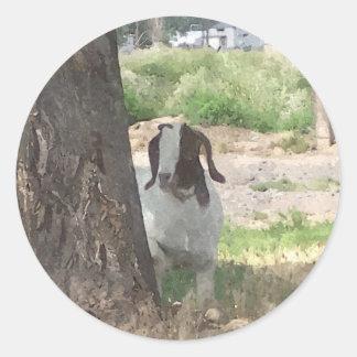Watercolor Boer Goat Classic Round Sticker
