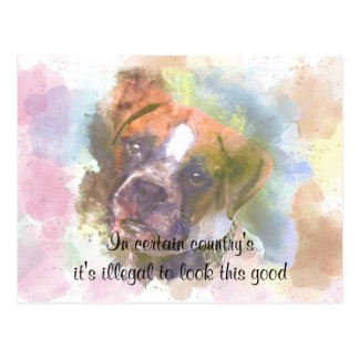 Watercolor Boxer Dog Postcard