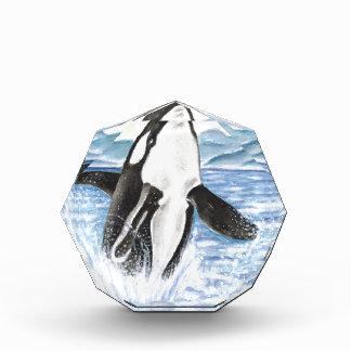 Watercolor Breaching Orca Whale Award