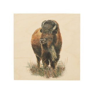 Watercolor Buffalo Bison Animal Nature Art Wood Wall Decor