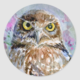 Watercolor Burrowing owl large head Round Stickers