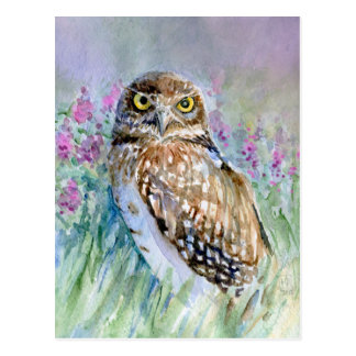 Watercolor Burrowing owl Postcard