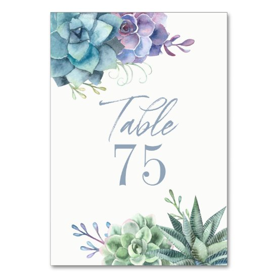 Watercolor Cactus Succulents Table Number