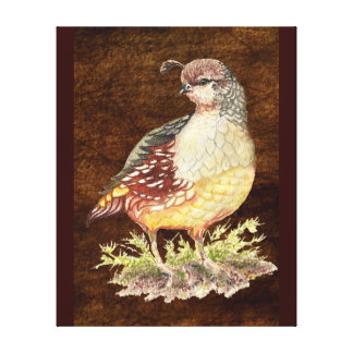 Watercolor California Quail Bird Animal Nature Art Canvas Print