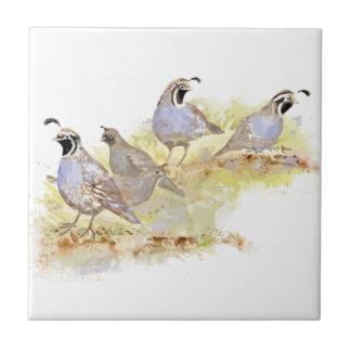 Watercolor California Quail Bird Nature Art Ceramic Tile