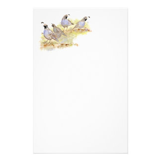 Watercolor California Quail Bird Nature Art Stationery