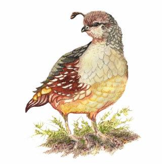 Watercolor California Quail, Garden Bird Statuette
