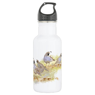 Watercolor California Quail State Bird Nature art Stainless Steel Water Bottle