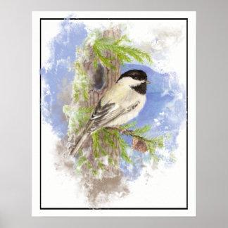 Watercolor Chickadee Bird Spruce Tree Poster