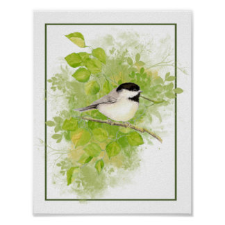 Watercolor Chickadee in Poplar Tree Art Poster