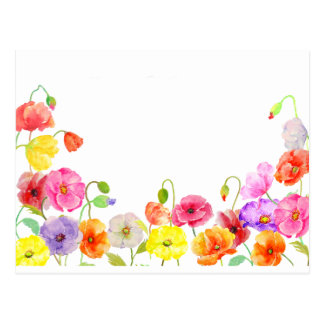 Watercolor Colorful Poppies flowers Postcard