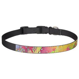 watercolor colors pet collar