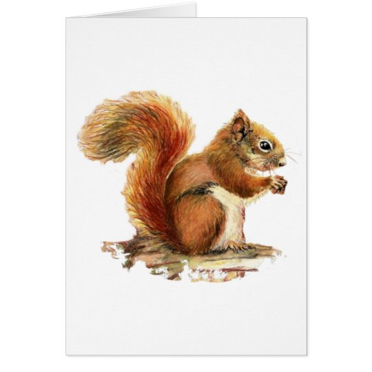Watercolor Cute Red Squirrel Animal Nature Card