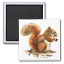 Watercolor Cute Red Squirrel Animal Nature Magnet