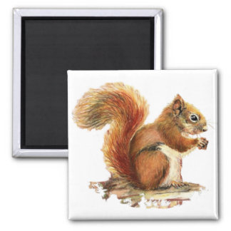 Watercolor Cute Red Squirrel Animal Nature 2 Inch Square Magnet