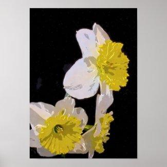 Watercolor Daffodil on Black zazzle_print