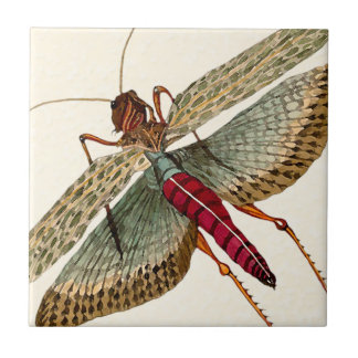 Watercolor Dragon Fly on Off-White Trivet 3