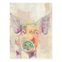 Watercolor Farm Collage Pig Postcard