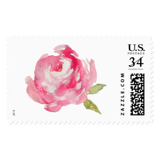 Watercolor Flower Stamp. Watercolor Peony Stamp