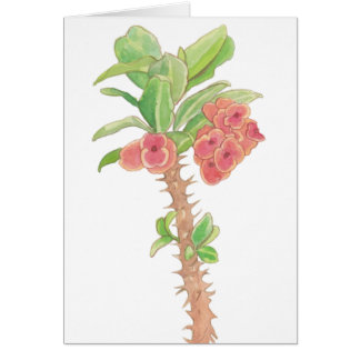 Watercolor Flowers Crown of Thorns Plant Card