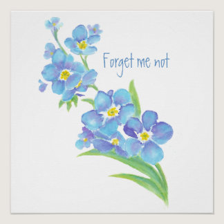 Watercolor Forget-me-not flower Pretty blue floral Poster
