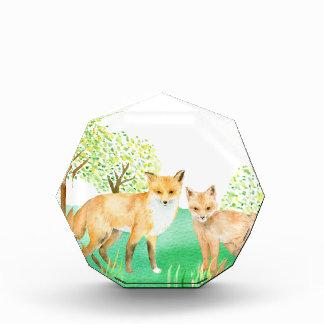 Watercolor fox and kit award