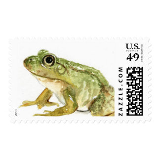 Watercolor Frog Stamp