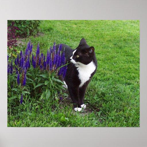 Watercolor Garden Cat Poster