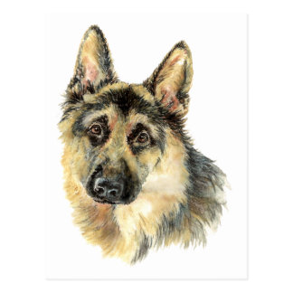Watercolor German Shepherd Pet Dog Animal Postcard