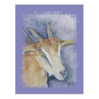 Watercolor Goat/Kid Postcard