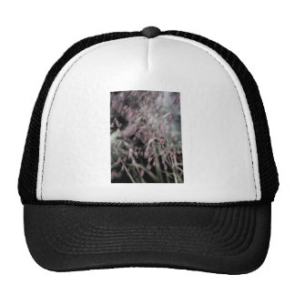 Watercolor Grasses in Pink Trucker Hat