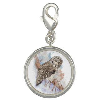 Watercolor Great Gray Owl Bird Nature Art Photo Charm