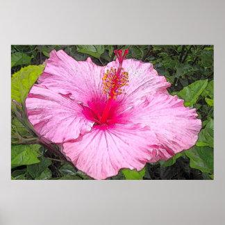Watercolor Hibiscus Print