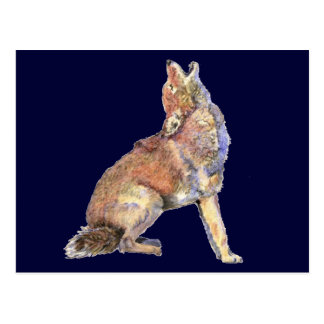 Watercolor Howling Coyote, Animal, Nature Wildlife Postcard