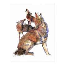 Watercolor Howling Coyotes Animal Nature Art Postcard
