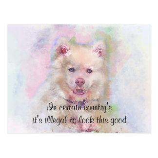 Watercolor Husky Dog Postcard