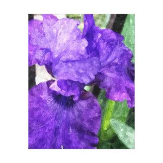 Watercolor Iris Canvas