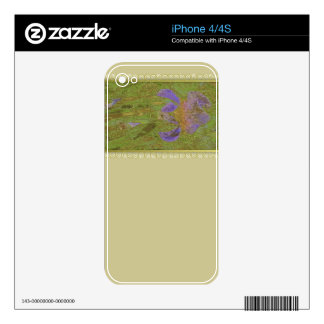 Watercolor Iris Gold & Lace Tan Decals For The iPhone 4S