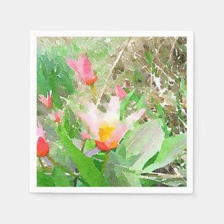 Watercolor Kaufmanniana Tulips Napkin
