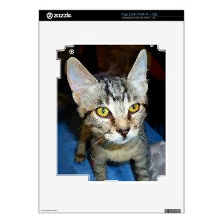 Watercolor Kitten iPad 2 Decal