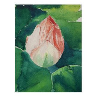 Watercolor Lotus Postcard