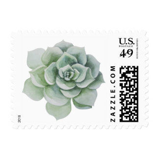 Watercolor Mint Green Succulent Cactus Floral Postage Stamp