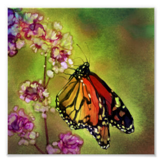 Watercolor Monarch Butterfly Canvas Print (8x8)
