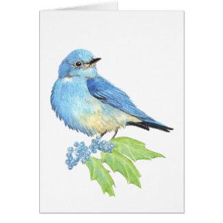 Watercolor Mountain Bluebird Blue Bird Art for the Card