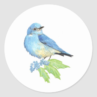 Watercolor Mountain Bluebird Blue Bird Art for the Classic Round Sticker